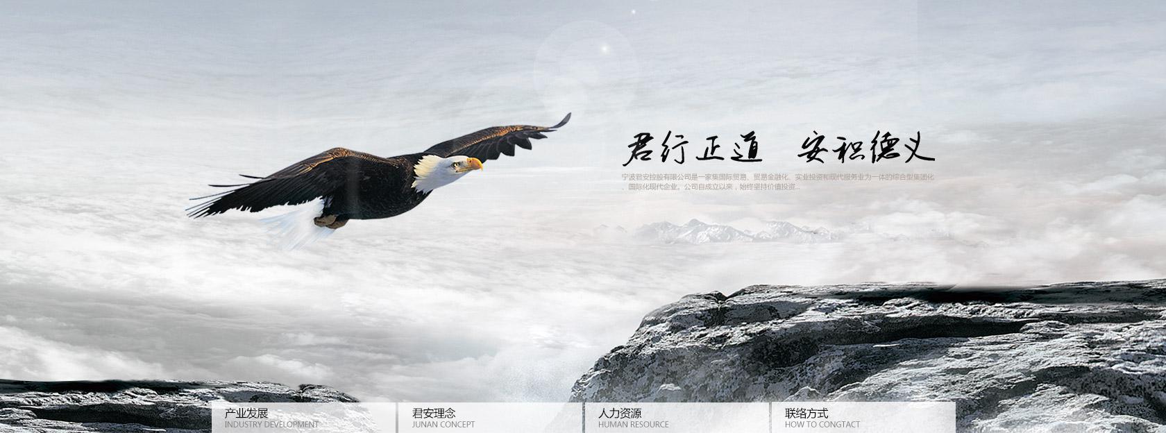 宁波君安控股雷竞技